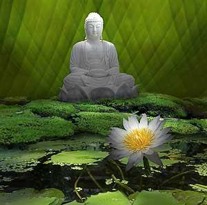 Popular Buddha Images Myspace Orkut Friendster Multiply Hi5 Websites Blogs