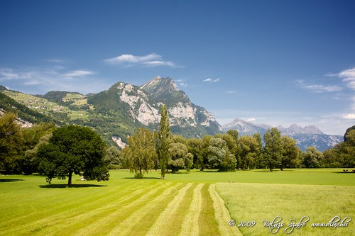 Swiss nature, Weesen