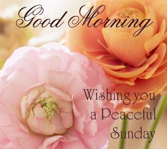 Good Morning Wishing You A Peaceful Sunday Quote Pictures Photos