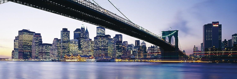 Nova Iorque cabeçalho do twitter