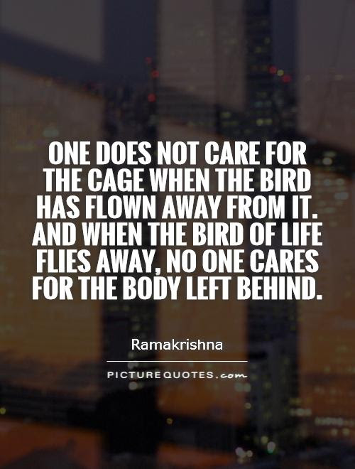 One Does Not Care For The Cage When The Bird Has Flown Away From