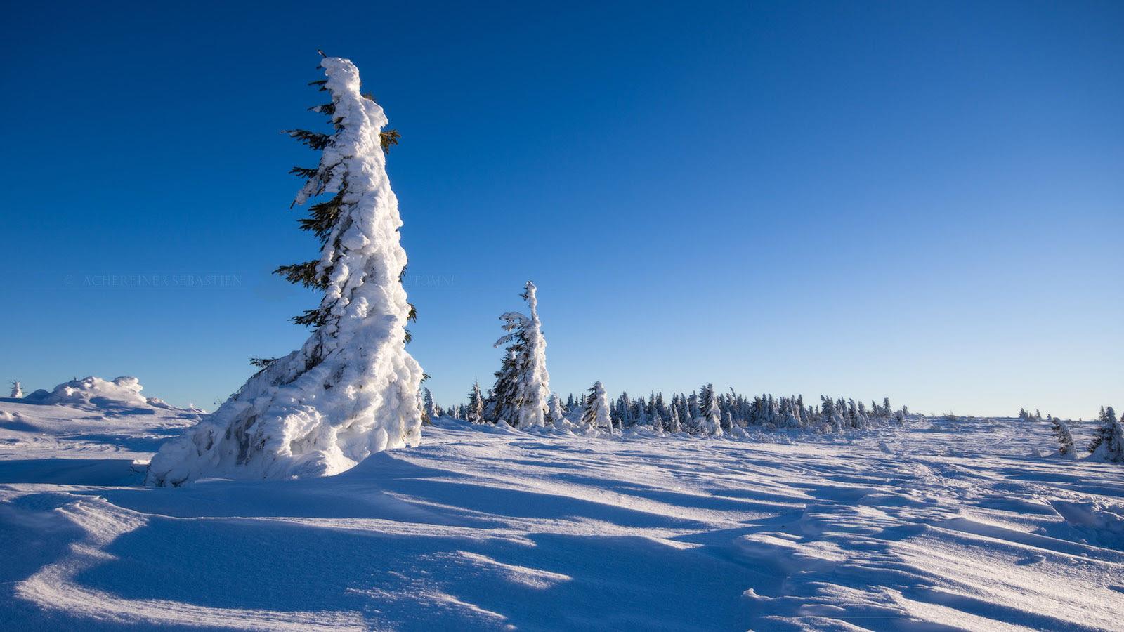 Paysage hivernal [1600x900]