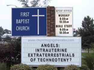 Angels: Intrauterine Extraterrestrials of Techneoteny