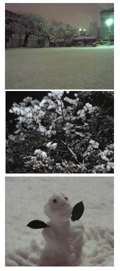 津市の大雪の日!