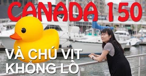 Cuộc sống Toronto - Quốc khánh 150 của Canada - Ngắm chú vịt khổng lồ và xem pháo bông -