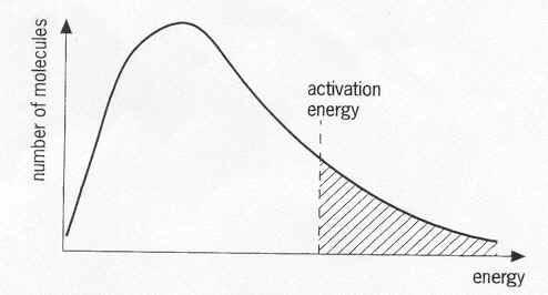 Chemistry Wiki: Kinetics Notes 1