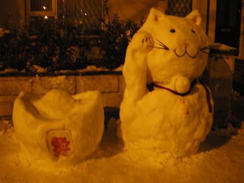 Snow Chinese Cat