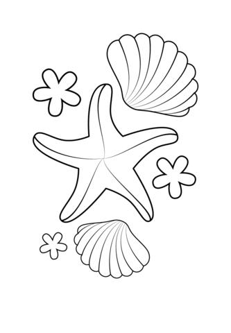Estrellas Para Recortar Stunning Estrella De Mar Y Conchas Dibujo