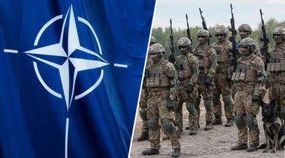 «Форма политической пропаганды»: почему Зеленский заявил об «открытых дверях НАТО» для Украины