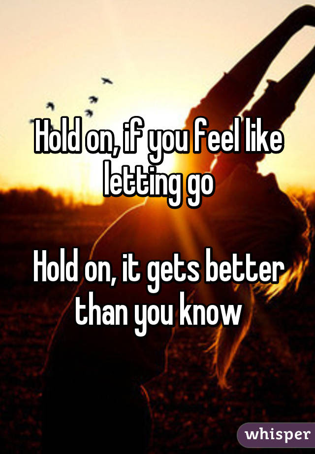 Hold On If You Feel Like Letting Go Hold On It Gets Better Than