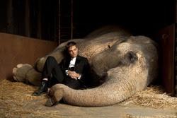Agua Para Elefantes Sinopsis Crítica Trailer Análisis