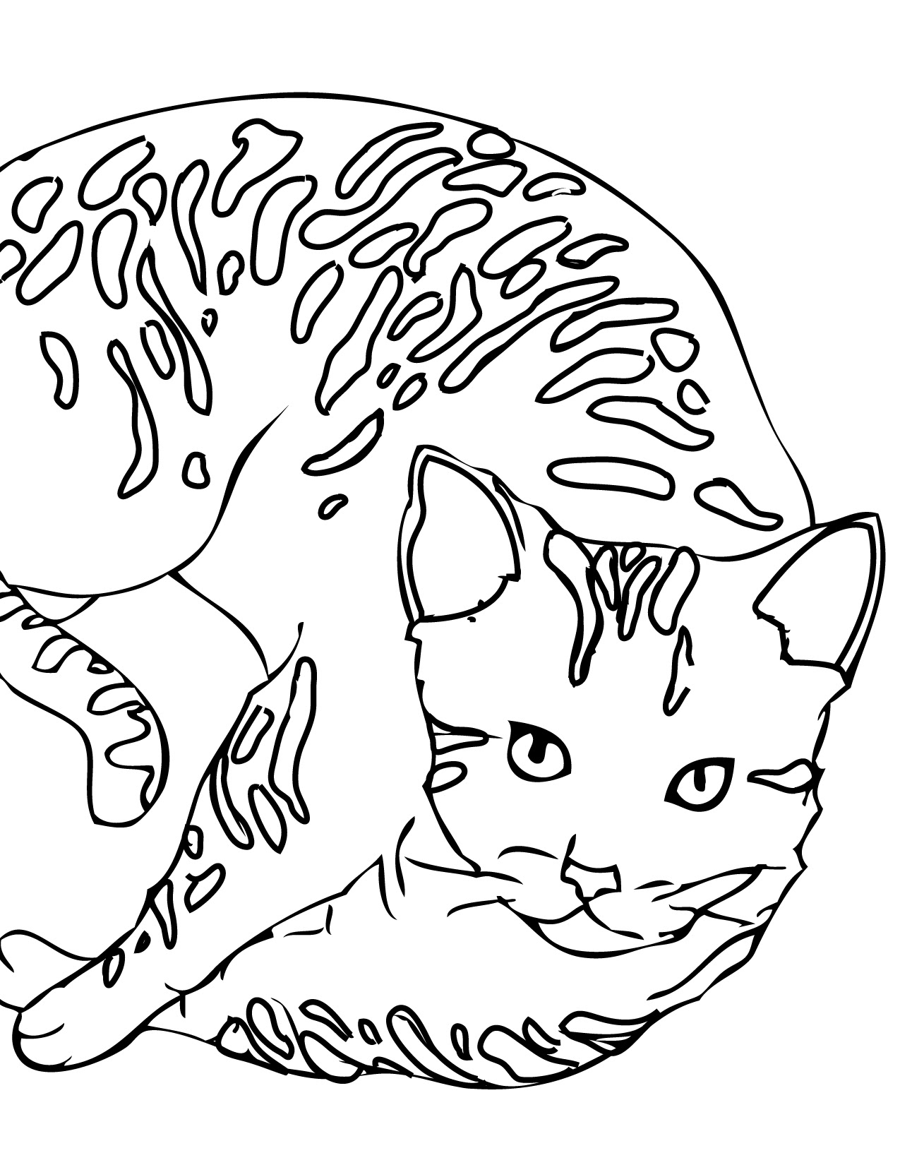 Imágenes De Gatos Para Colorear Dibujos De