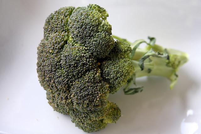 Bróccolli