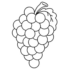 Group Of Grape Coloring Pages