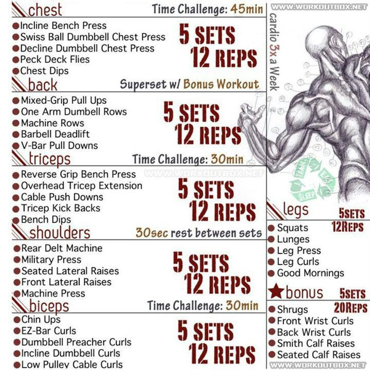 Body Transformation Crossfit The Best Exercise Routines To Get Ripped