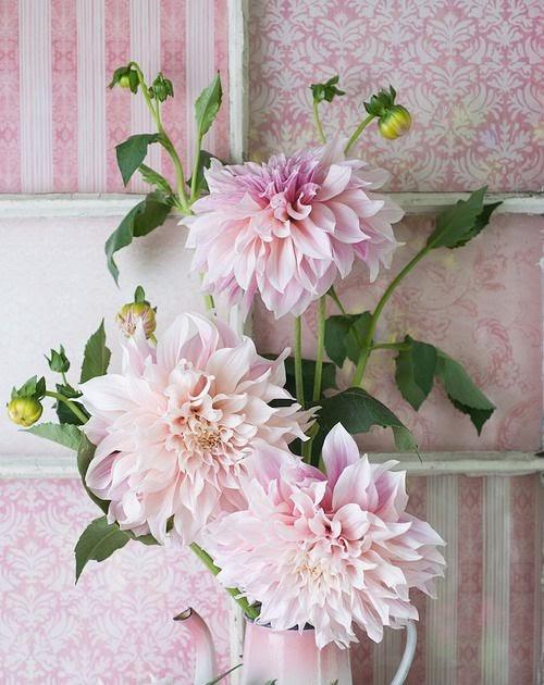 Feliz d a rosa ideas de como decorar rincones con este - Decorar rincones ...