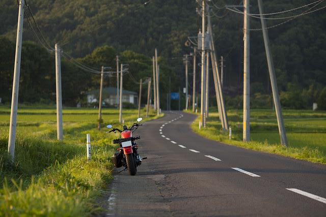 Harley Davidson XL 883R 066