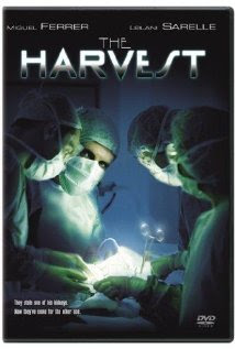 The Harvest | Tacky Harper's Cryptic Clues