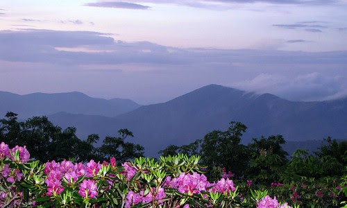 view from the Parkway at dusk, Craggy Gardens (by: BlueRidgeKitties, creative commons license)