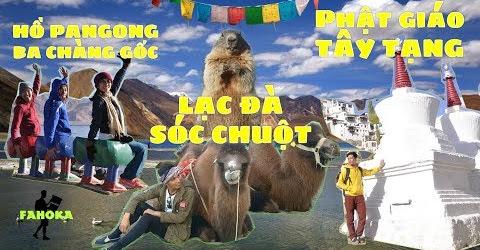Hành Trình Hymalaya Vlog 02: Núi tuyết, lạc đà, tu viện & hồ quay phim Ba Chàng Ngốc