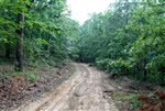 Oklahoma, Pushmataha County, 10.67 Acre Trophy Ridge III. TERMS $200/Month