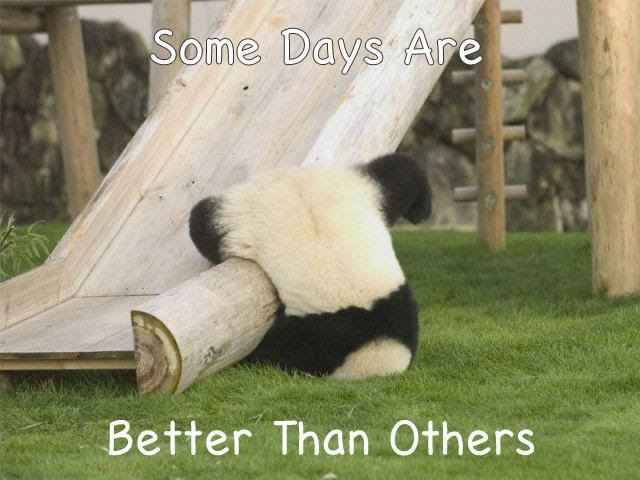 Some Days Are Better Than Others Picture Quotes