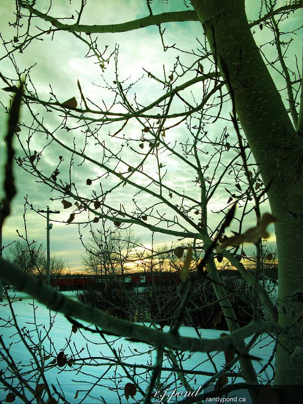 ~ Day Light 12/365 ~