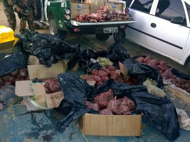 Arribaçãs mortas foram encontradas em uma casa na cidade de Jardim do Seridó, no RN (Foto: Divulgação/Cipam)