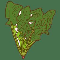 ほうれん草のイラスト野菜のイラスト無料イラスト素材 無料
