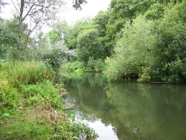 File:River Nadder, Bemerton - geograph.org.uk - 909581.jpg