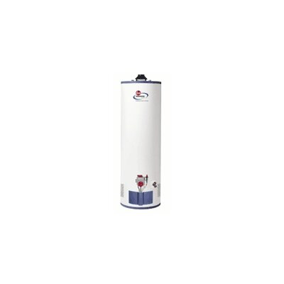 Water Heater Price List Top Price Rheem 42v75pf N A Fury