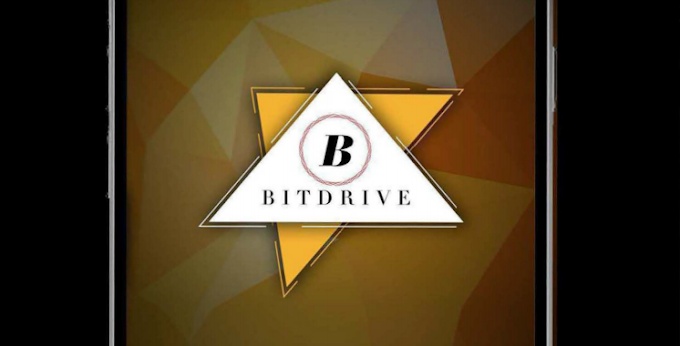 Bitdrive. Ico information