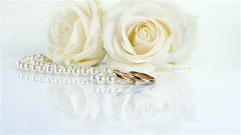White roses and wedding rings wallpapers and images
