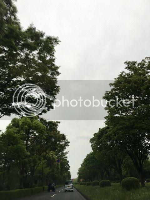 photo IMG_3200_zpsxxlruyfw.jpg