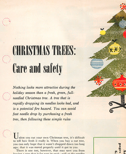Christmas Trees: Care and safety