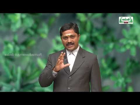 NEET Botany தாவரவியல் Reproduction in Plants by Kalvi TV