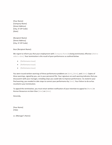 Sample Letter Of Termination Of Employment Due To Poor Performance from lh6.googleusercontent.com