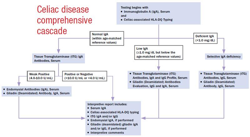 Celiac disease comprehensive cascade