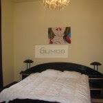 #domenii #Herastrau #elias #Piatadomenii #3camere #vila #rent #inchirierenord #rezidential # (37)