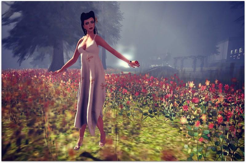 Acid Lily 6/5