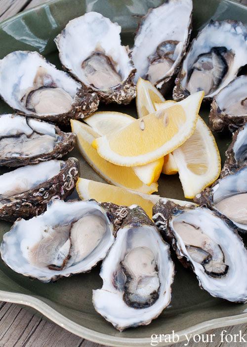 American River oysters, Kangaroo Island