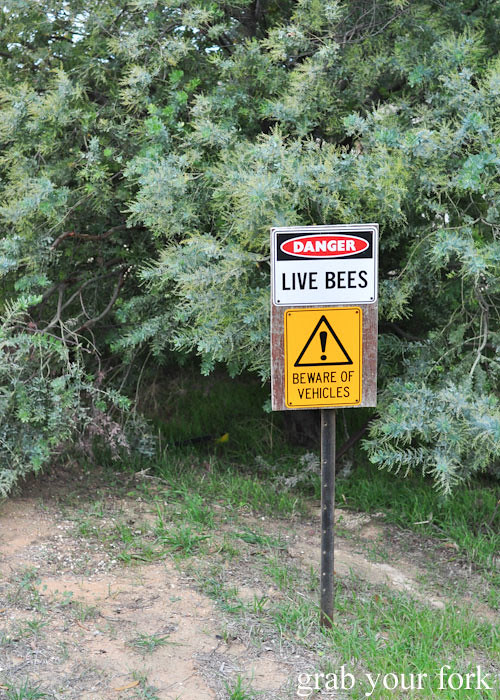 Live bees sign at Buzz Honey Bee Farm