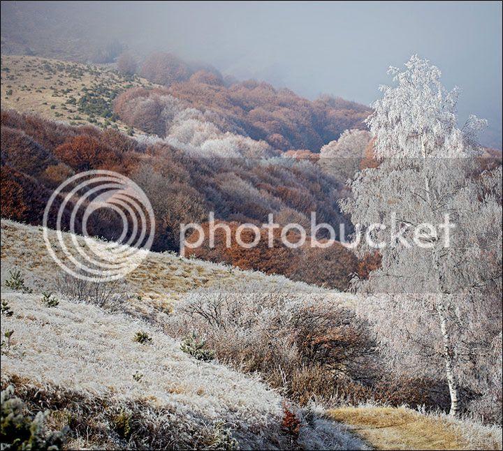 photo Evgeni-Donev-4_zps33406fbd.jpg