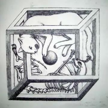 Origem e Motivação De Schrödinger
