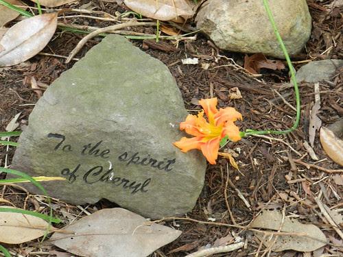 todayflowersDSCN9642