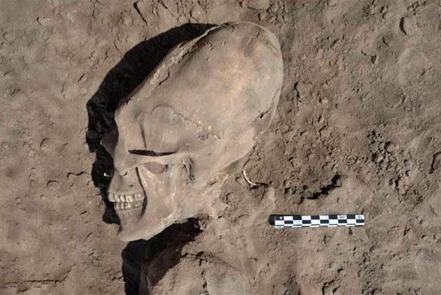 Crânio deformado de uma das ossadas. (Foto: INAH/Divulgação)