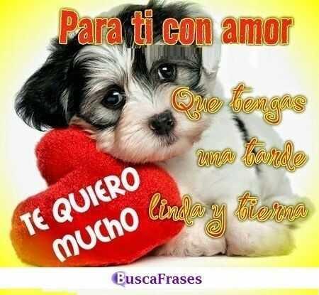 Frases De Buenas Tardes Amor Buscalogratis Es