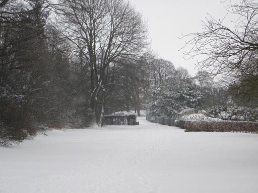 Snow 023-008.jpg