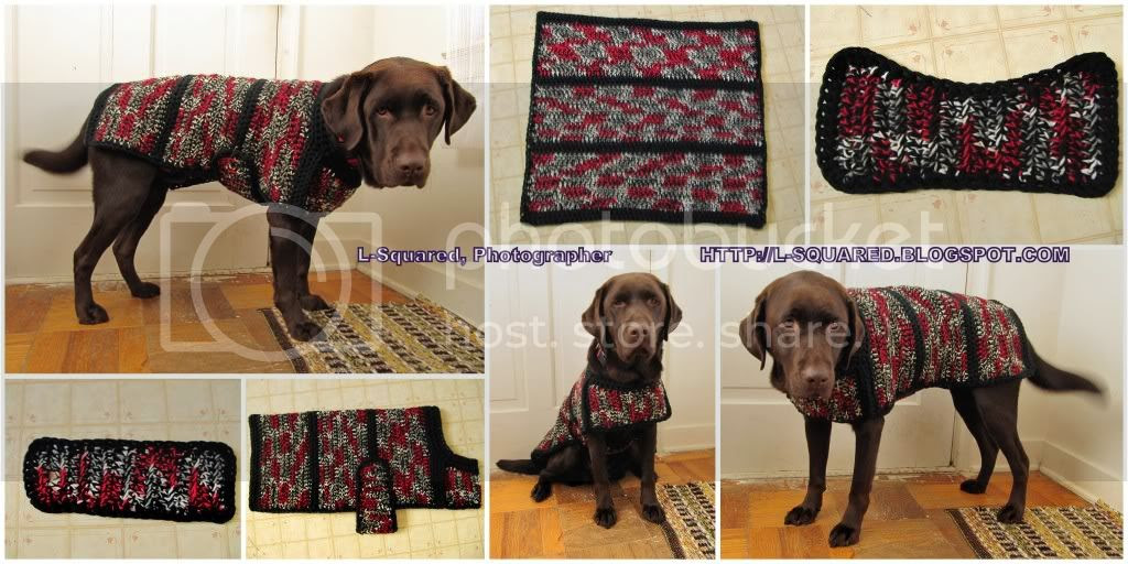 7 photos: 3 of my dog wearing his new black, white, red and gray sweater jacket taken from various angles 1 of the completed back section, 1 of the completed chest section, 1 of the completed belly strap, and 1 of the entire sweater sewn together, laid out (not on the dog).