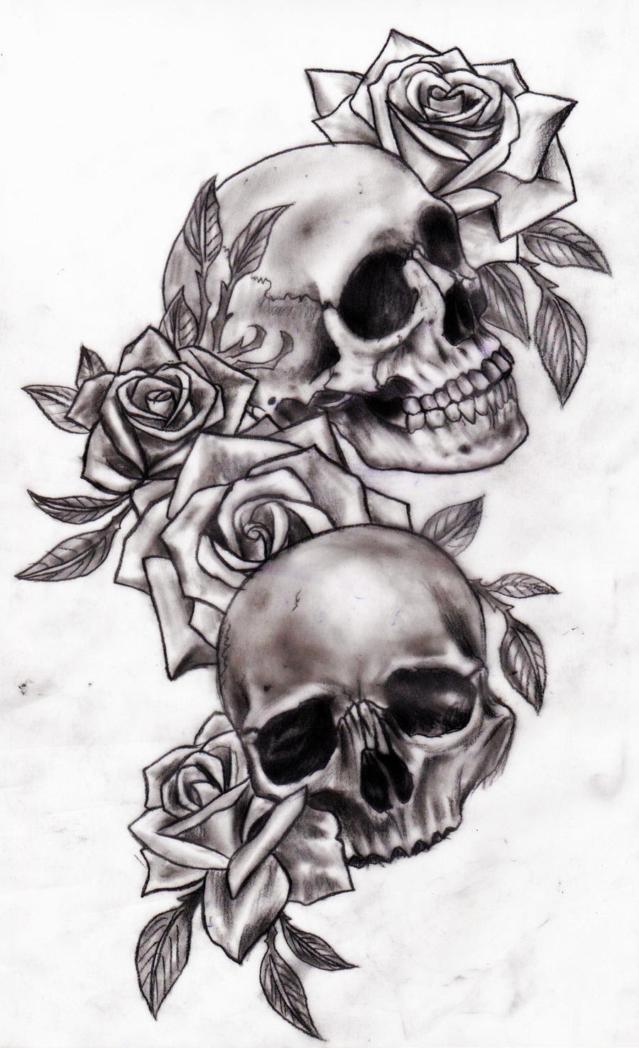 Skull And Roses Tattoo Ellenslillehjorne